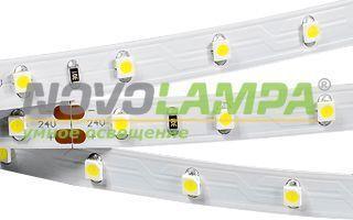 Лента RT 2-5000 24V Day4000 (3528, 300 LED, S-LUX). Фото